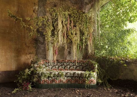 mythical fabric upholstered sofa in cave with hanging foliage