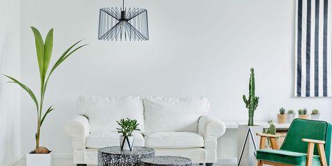 White, Room, Furniture, Green, Interior design, Living room, Table, Wall, Floor, Design,
