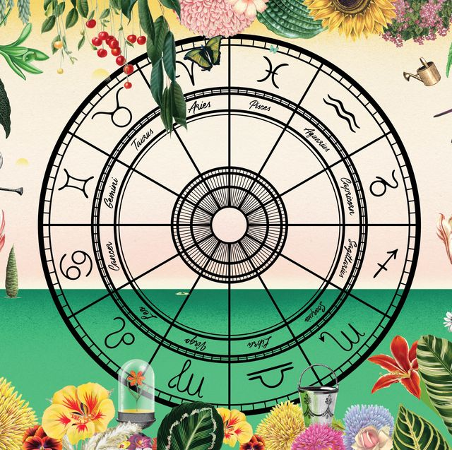 flowers to plant based on your astrological sign