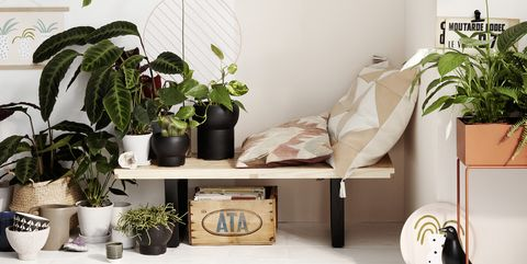 design decorate - Decorate Pictures