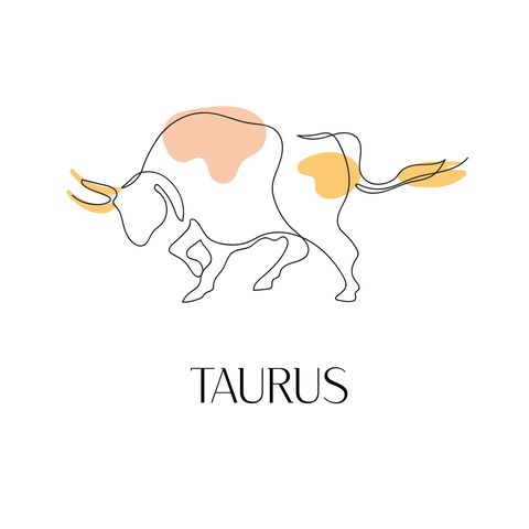 zodiac sign taurus one line vector illustration in the style of minimalism