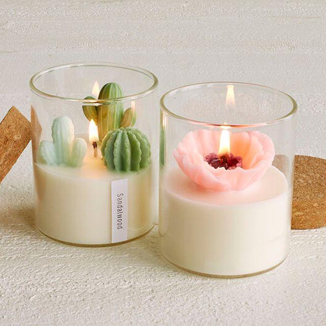 zoe tang terrarium candles