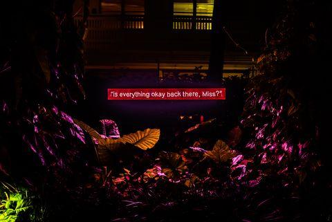 Zoe Buckman Neon Art