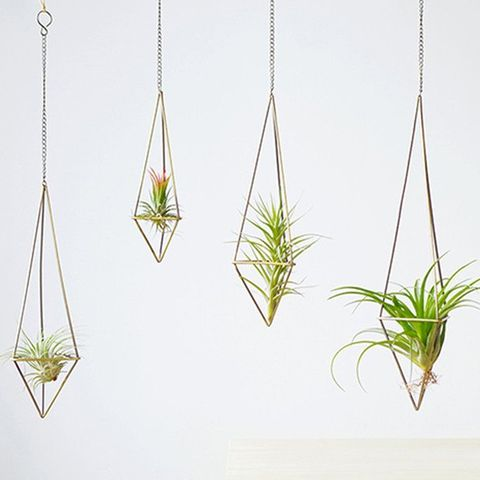 13 Best Indoor Hanging Planters Rack Side Of House Plant on house plant poles, house plant trays, house plant containers, house plant watering devices, house plant holders, house plant stakes, house plant shelving, house plant supports, house plant stands, house plant hangers,