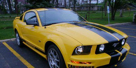 Vehicle, Yellow, Hood, Infrastructure, Headlamp, Car, Automotive lighting, Fender, Woody plant, Bumper,
