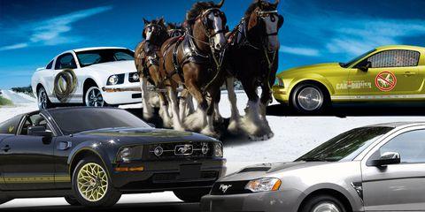Wheel, Tire, Motor vehicle, Mode of transport, Land vehicle, Automotive design, Vehicle, Transport, Car, Automotive parking light,