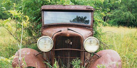 Motor vehicle, Grass, Automotive design, Photograph, Plant community, Car, Grille, Fender, Classic, Headlamp,