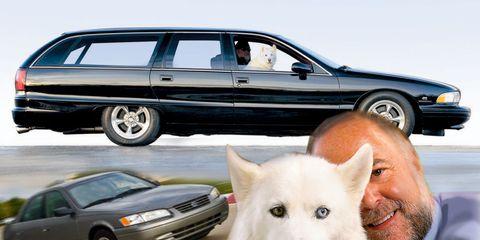 Wheel, Tire, Vehicle, Land vehicle, Automotive design, Automotive parking light, Vertebrate, Car, Dog breed, Dog,