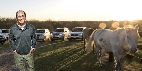 Working animal, Horse, Pasture, Grazing, Livestock, Ranch, Stallion, Luxury vehicle, Mare, Vehicle door,