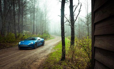Automotive design, Natural environment, Vehicle, Wood, Performance car, Headlamp, Automotive lighting, Tree, Car, Natural landscape,