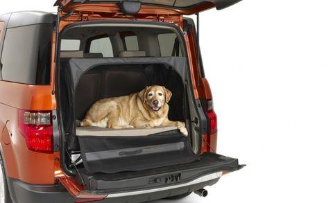 Honda Element Dog Friendly