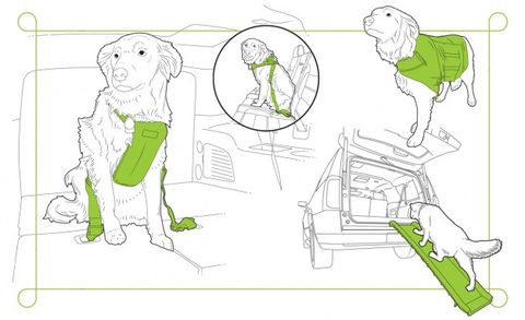 dog products for vehicles