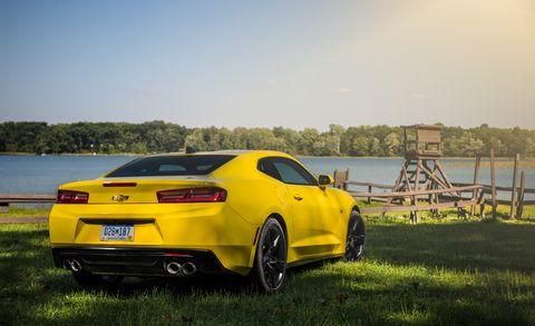 Tire, Wheel, Automotive design, Vehicle, Yellow, Performance car, Vehicle registration plate, Rim, Alloy wheel, Automotive exterior,