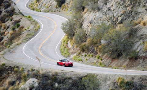 Road, Infrastructure, Road surface, Asphalt, Highway, Automotive tail & brake light, Automotive lighting, Thoroughfare, Subshrub, Freeway,