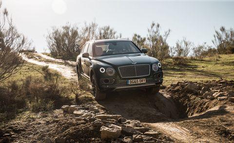 Automotive design, Vehicle, Land vehicle, Grille, Automotive exterior, Hood, Car, Landscape, Headlamp, Personal luxury car,