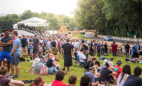 Crowd, Mammal, Community, Chair, Lawn, Sharing, Pole, Audience, Garden, Park,