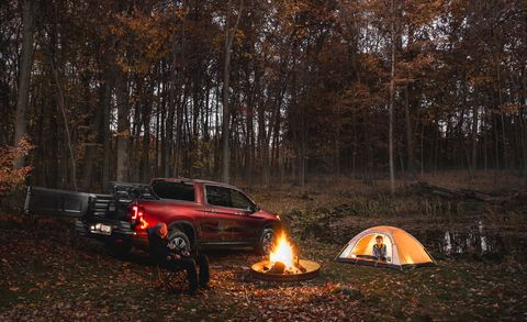 Tent, Natural environment, Camping, Tree, Pickup truck, Fender, Automotive tail & brake light, Woody plant, Forest, Woodland,
