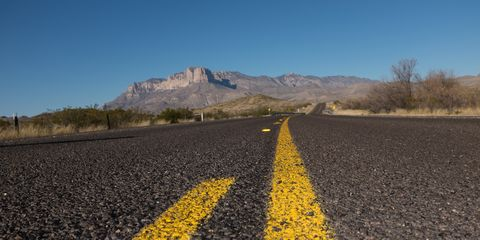 Yellow, Road, Sky, Field, Asphalt, Spring, Flower, Plant, Infrastructure, Road surface,