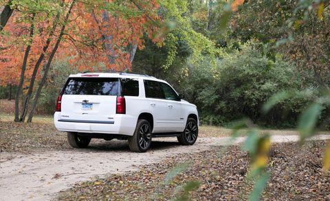 Land vehicle, Vehicle, Car, Sport utility vehicle, Chevrolet tahoe, Tree, Rim, Automotive design, Automotive luggage rack, Crossover suv,