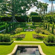 fernando wong gardening tips