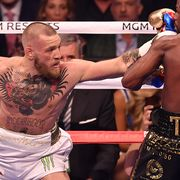 McGregor risk for dementia