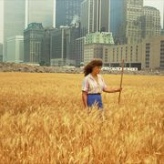 People in nature, Field, Grass, Grass family, Plant, Summer, Wheat, Crop, Fun, Agriculture,