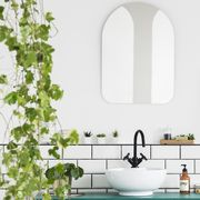 Mirror and poster in white bathroom interior with washbasin and plant