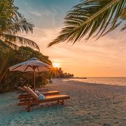 beautiful tropical sunset scenery, two sun beds, loungers, umbrella under palm tree white sand, sea view with horizon, colorful twilight sky, calmness and relaxation inspirational beach resort hotel
