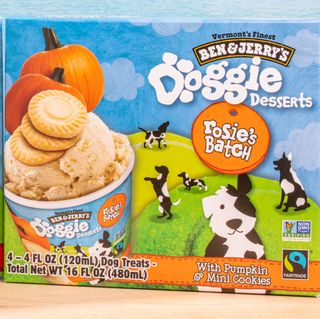 ben and jerrys dog friendly treats
