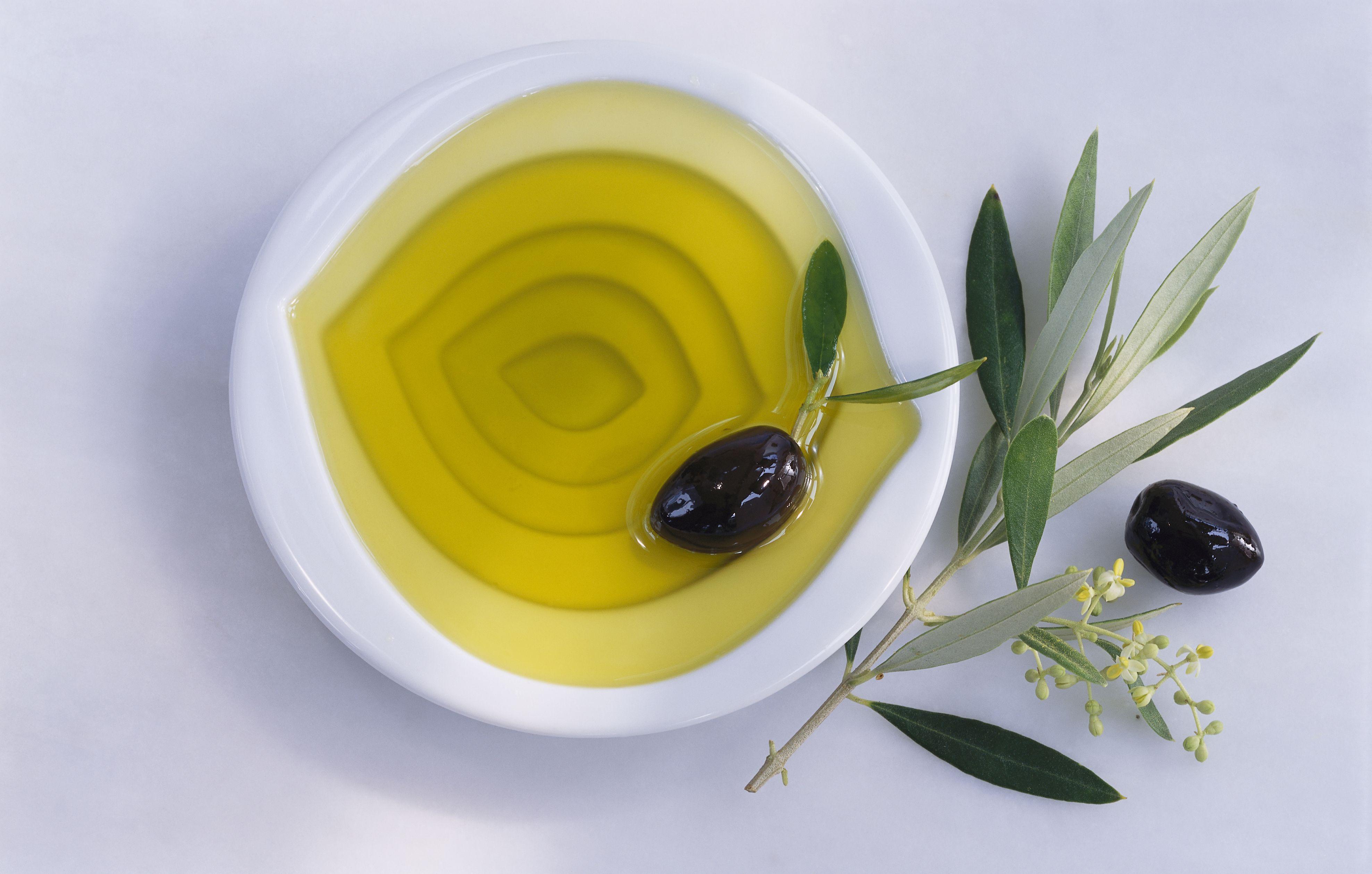 Bowl of olive oil, olives, twig of olive tree