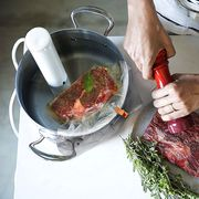 breville sous vide with steaks