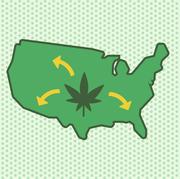 Green, Leaf, Logo, Illustration, Plant, Graphics, Symbol,