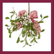 best christmas plants