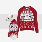 christmas sweaters let you and your dog match