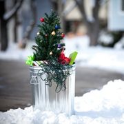 when to take christmas tree down