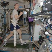 Colbert Space Treadmill