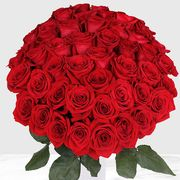 costco 50 count red roses