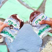 It's-It Ice Cream Co. costco finds best 2019