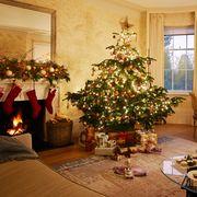 christmas where to go
