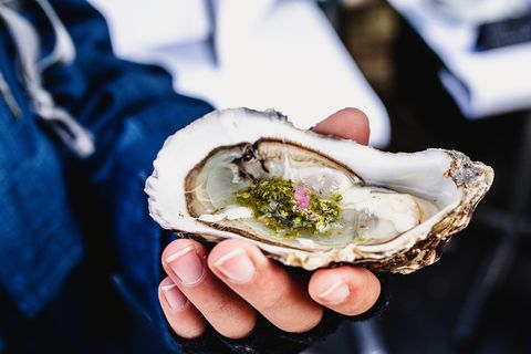 oester in hand
