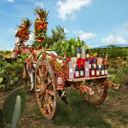 dolce and gabbana and donnafugata wines