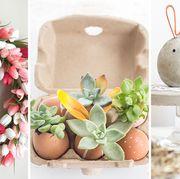 Flowerpot, Easter, Flower, Plant, Easter egg, Houseplant, Succulent plant,