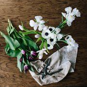 Flower, Purple, Plant, Violet, Flowering plant, Spring, Cut flowers, Violet family, Viola, Bouquet,