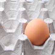 egg on egg tray