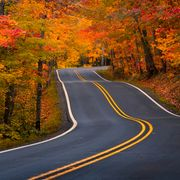 empty road amidst trees during autumn,copper harbor,michigan,united states,usa