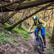 single speed mountain bike mtb enduro mountain biking in a pristine forest