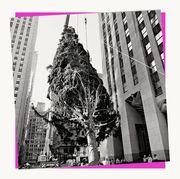 2020 rockefeller center christmas tree