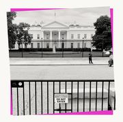 the white house behind a security fence