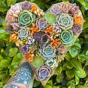 etsy succulent filled heart planter