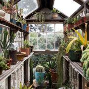 greenhouse decorating ideas